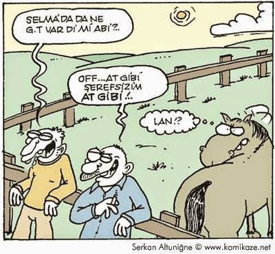 at gibi karikatürü