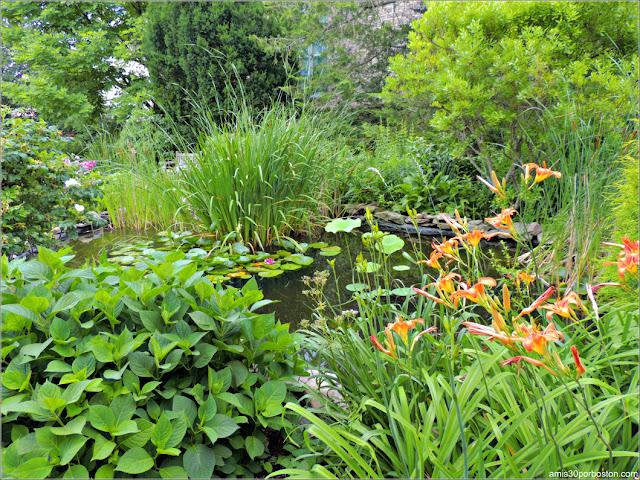 Estanque del Jardín de la Mansión Ropes en Salem