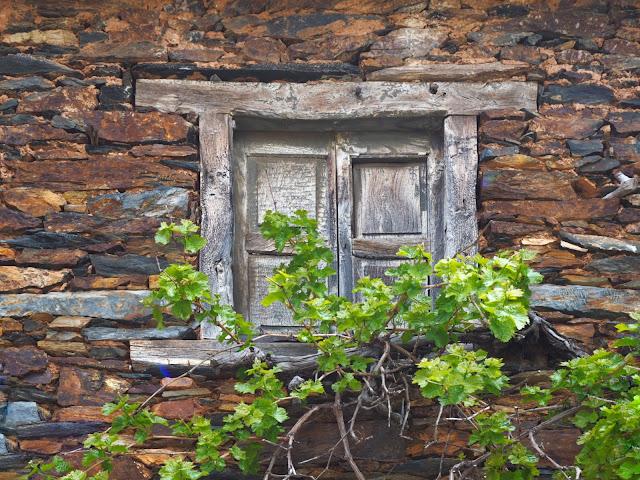 Ventana de madera sobre una fachada de piedra rojiza con hiedra