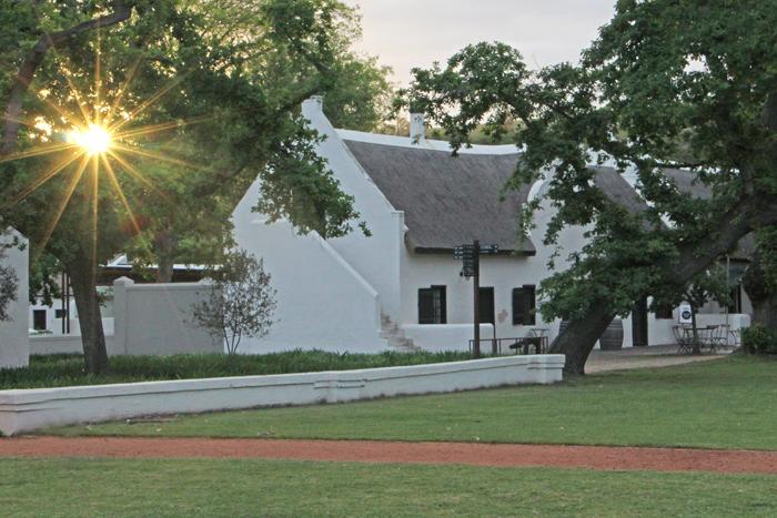 Sonnenuntergang Spier Stellenbosch