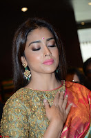 Shriya Saran Looks Stunning in Silk Saree at VRK Silk Showroom Launch Secundrabad ~  Exclusive 176.JPG