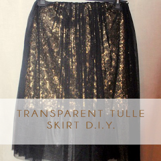 Transparent Tulle Skirt