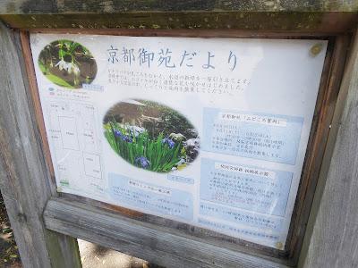 京都御苑だより