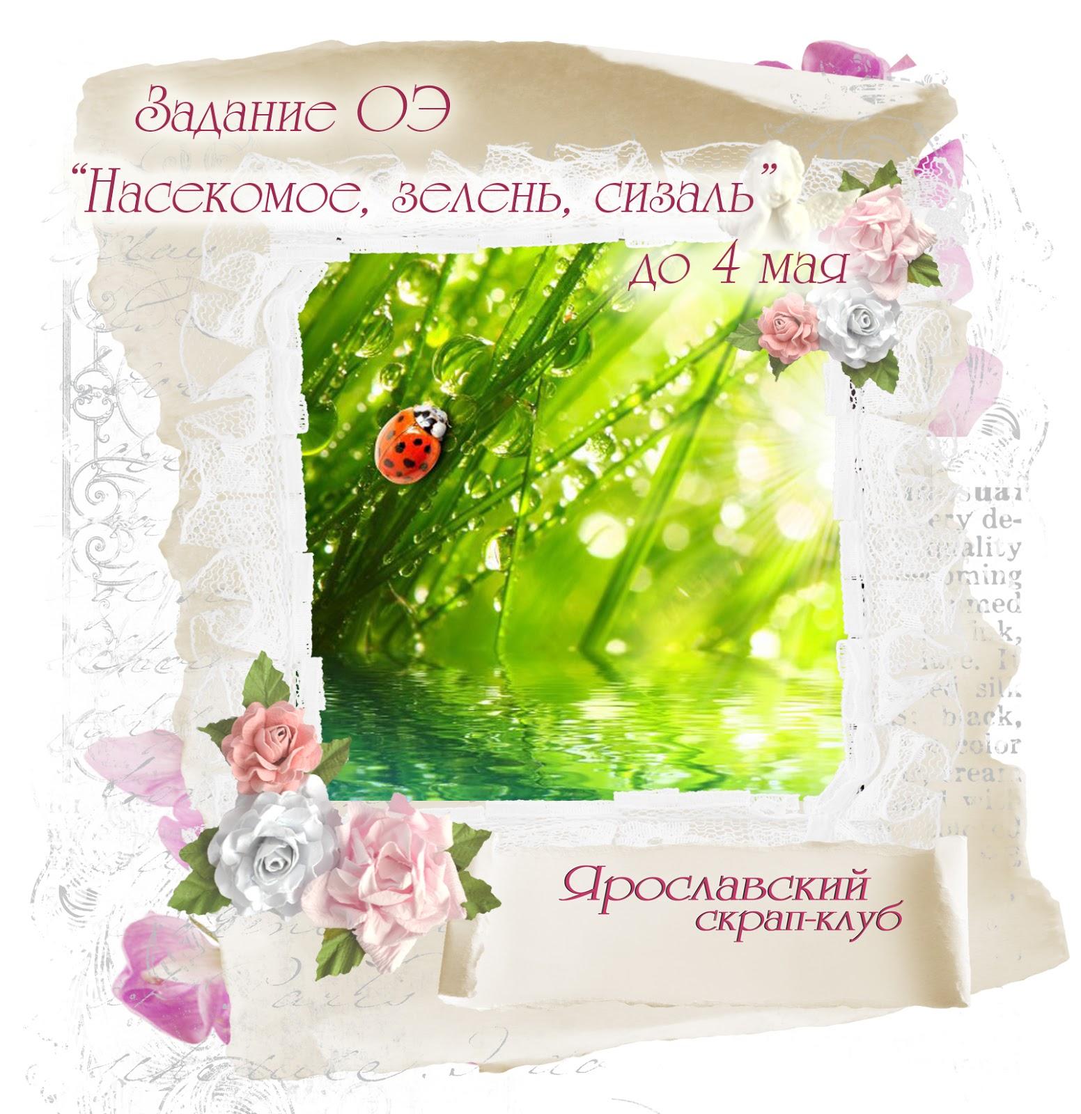 """ОЭ """"Насекомое, зелень, сизаль"""" до 04.05.17"""