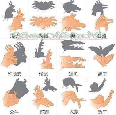 Bentuk - Bentuk Bayangan Tangan Di Dinding