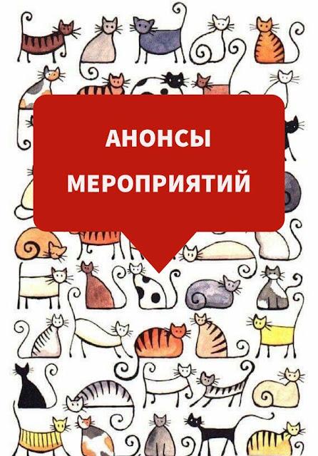 Анонсы: Марафон 2Половинка, Тренинг в Москве