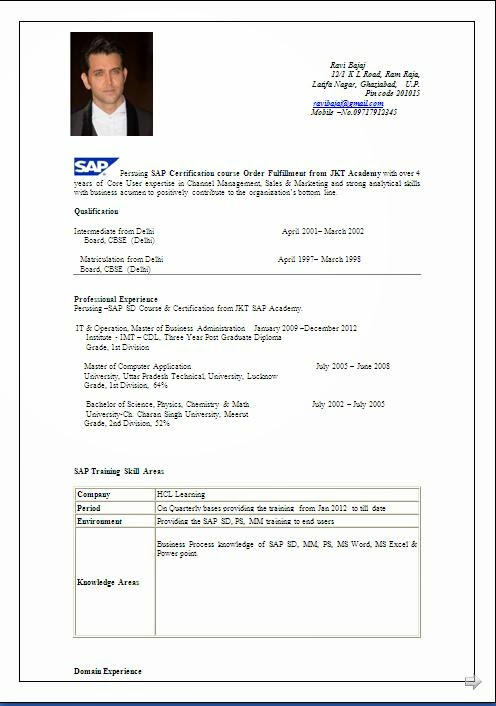 sap resume suraj pdf over cv and resume samples with free download blogger