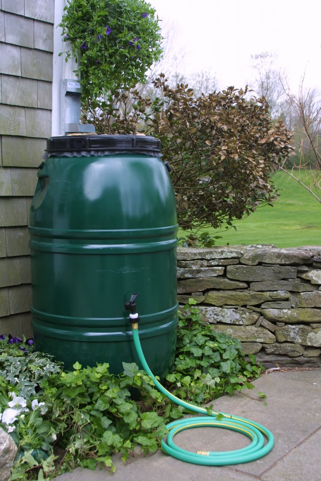 Flowers And Flour Rain Barrels