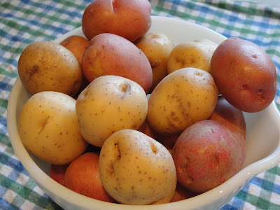 bowl of small red and white potatoes