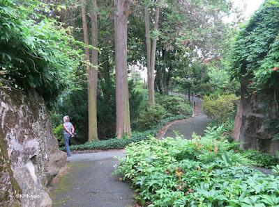 strolling the garden