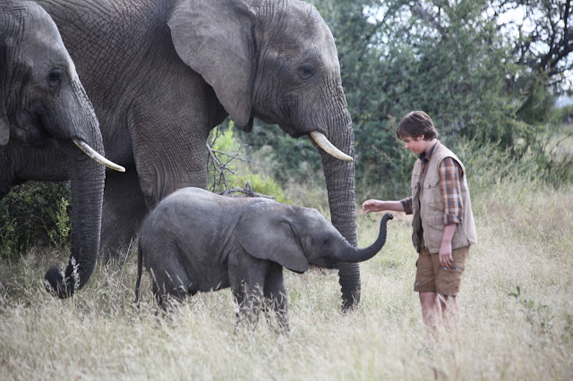 """Phoenix Wilder: And The Great Elephant Adventure"" - Sam with baby and parents"