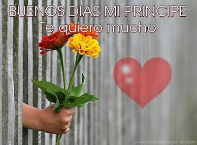 imagen bonita con flores de buenos dias mi principe te quiero mucho