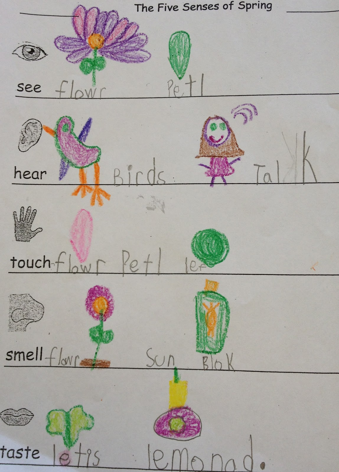 Kindergarten Korner The Five Senses Of Spring Activity