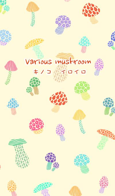 Various mushroom