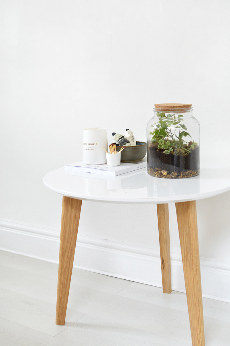 how to make a simple ivy terrarium