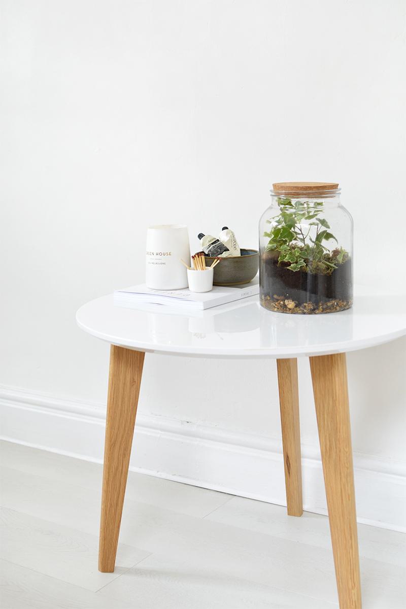 how to make a simple ivy terrarium