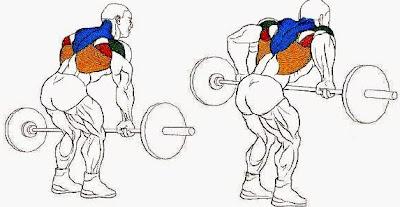 Rutina de pesas para hombres ectomorfos, delgados o flacos