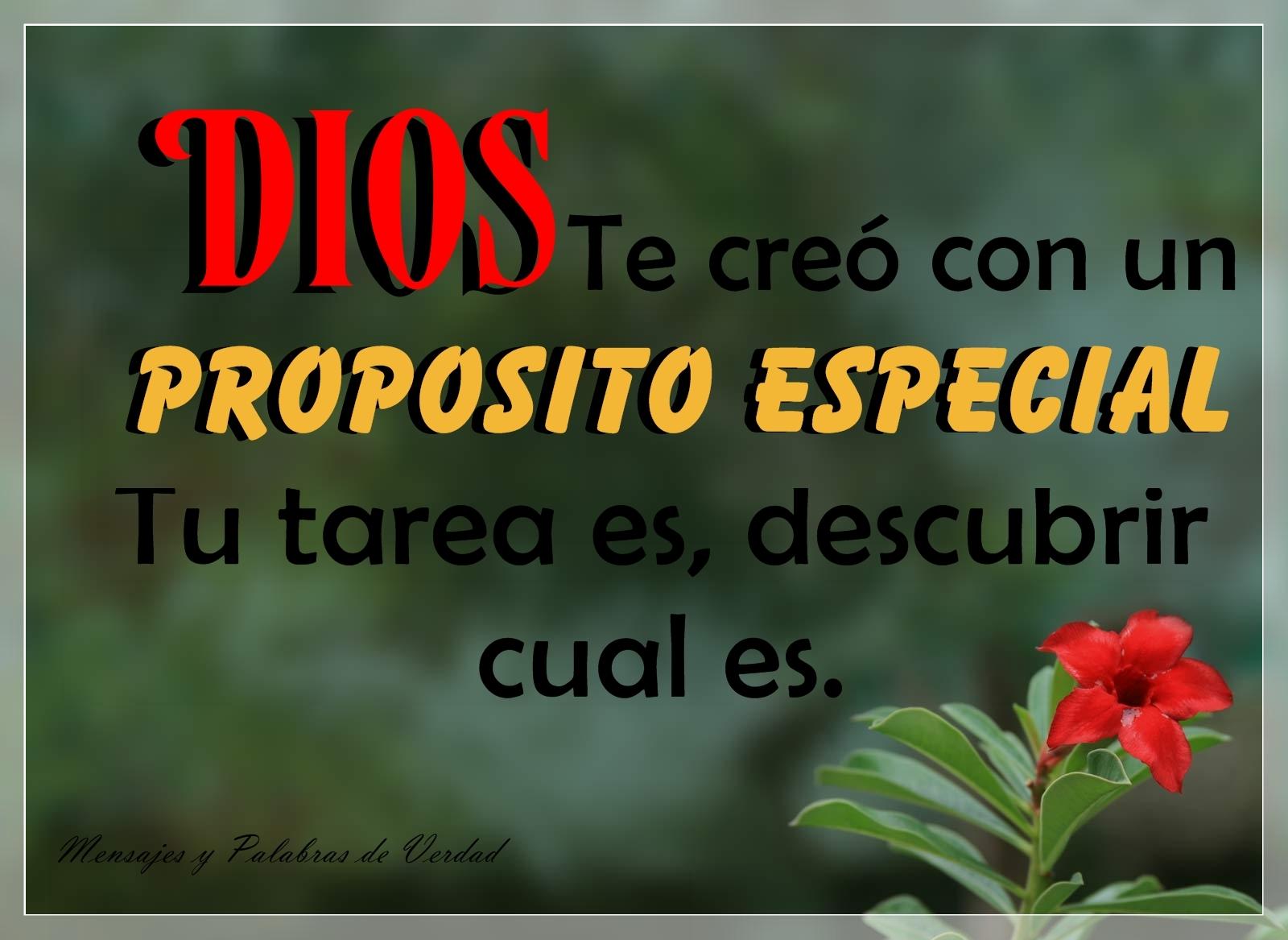 Mensajes Y Palabras De Verdad Tarjetas Con Mensaje De Dios