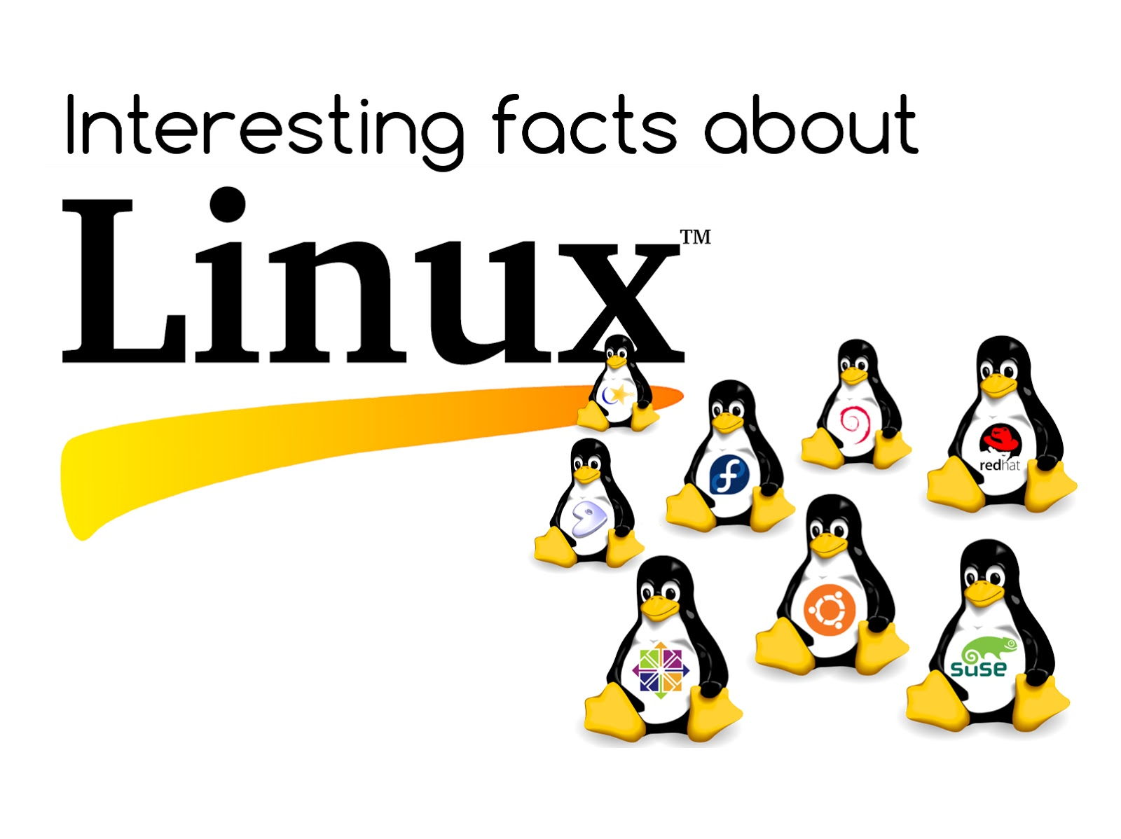 Interesting facts about Linux OS