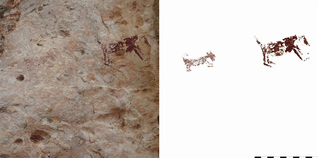 Indonesian island found to be unusually rich in cave paintings
