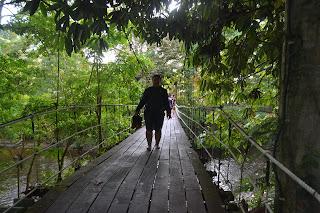 Menyusuri jembatan kayu Mulu National Park