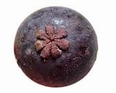 buah manggis 7