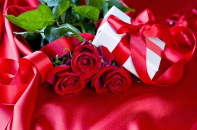 LOVELY RED ROSES WALLPAPERS HD IMAGES FOR DESKTOP OR ANDROID