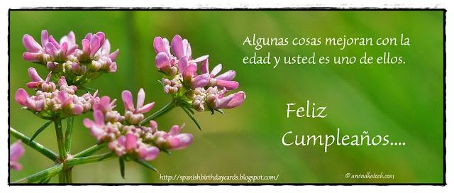 Tarjeta de Cumpleaños, Algunas, cosas, mejoran, Spanish, Birthday Card