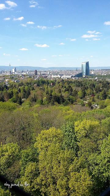 Frankfurt vazut din Goetheturm - in dreapta noul turn al Bancii Central Europene