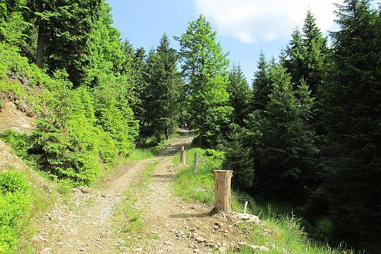 Niedaleko od Przełęczy Trzech Granic.