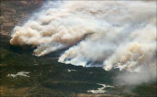 Incêndio florestal - O uso e controle do fogo em floresta no Código Florestal.