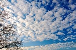 Strahlendweiße Wölkchen am blauen Himmel...