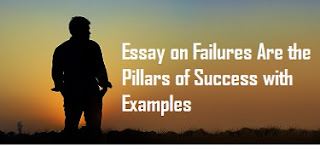 Failures Are the Pillars of Success with Examples