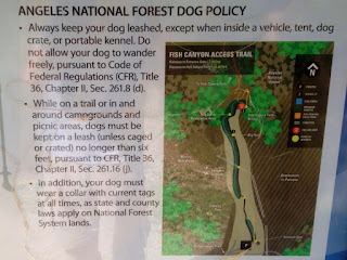 Leash laws clearly displayed on the Fish Canyon Trail kiosk at the Angeles National Forest boundary