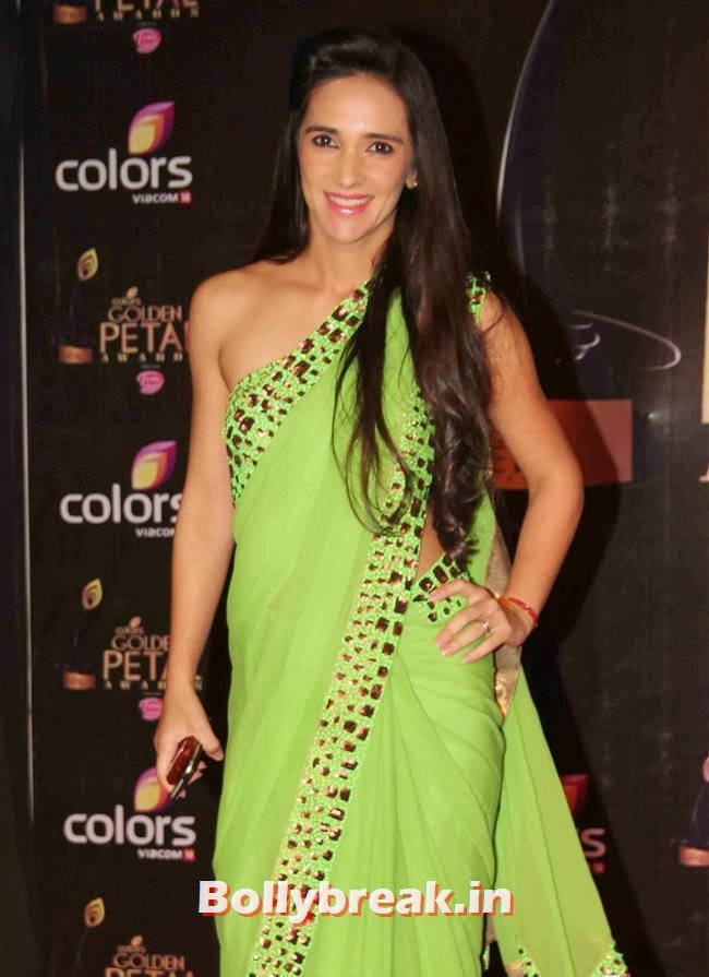 Tara Sharma, Colors Tv 3rd Golden Petal Awards