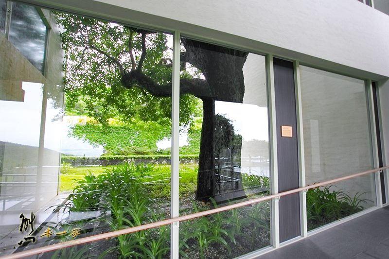 華泰瑞苑墾丁賓館|還有蝴蝶陸蟹相伴