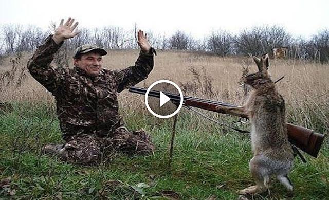 les moments les plus droles du chasse