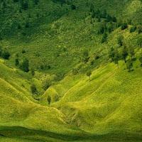 bukit teletubbies - Referensi Tempat Wisata di Sekitar Bromo