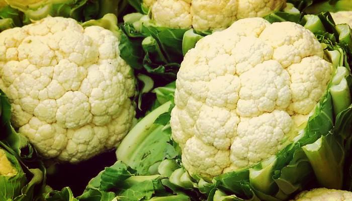 Cultivos de la coliflor