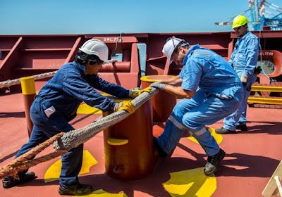 Dock Worker Job Search