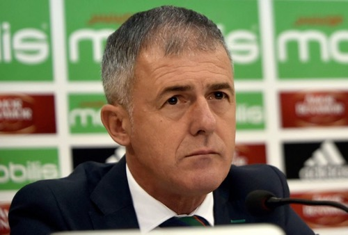 """مدرب الجزائر بعد إقصاء """"محاربي الصحراء"""" من التأهل للمونديال: لن أستقيل!"""