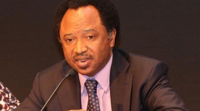$322m Abacha loot: Shehu Sani disagrees with Buhari on sharing of funds