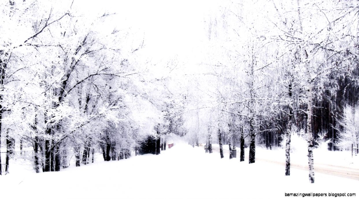 Winter Tumblr Photos | Amazing Wallpapers