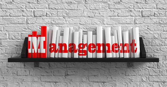 management meaning definition