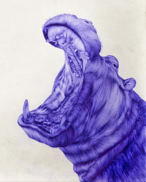 08-Hippo-Sarah-Esteje-ABADIDABOU-Hyper-realistic-Ballpoint-Pen-Animals-www-designstack-co