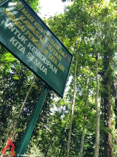 hutan-lindung-pria-laot