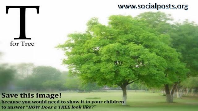 famous slogans on environment