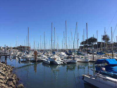 We see boats moored in the marina, tall masts stand against a deep blue sky on the right is a grove of trees across the water all reflected in the waters surface which is calm and mirror like.
