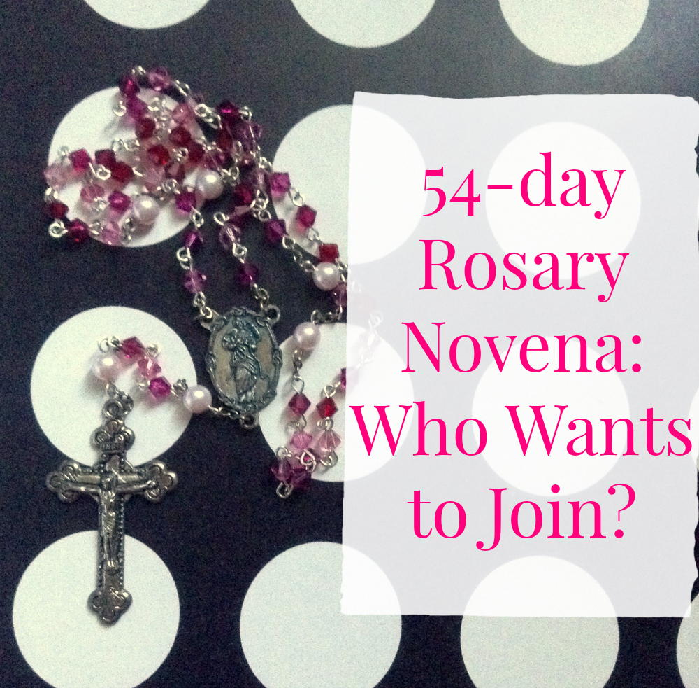 Journey of a Catholic Nerd Writer: 54-day Rosary Novena: Who Wants to Join?