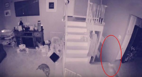 Οικογένεια ζει στο σπίτι παρέα με ένα φάντασμα - Βίντεο
